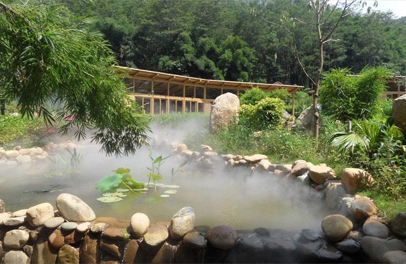 杭州西溪湿地景观